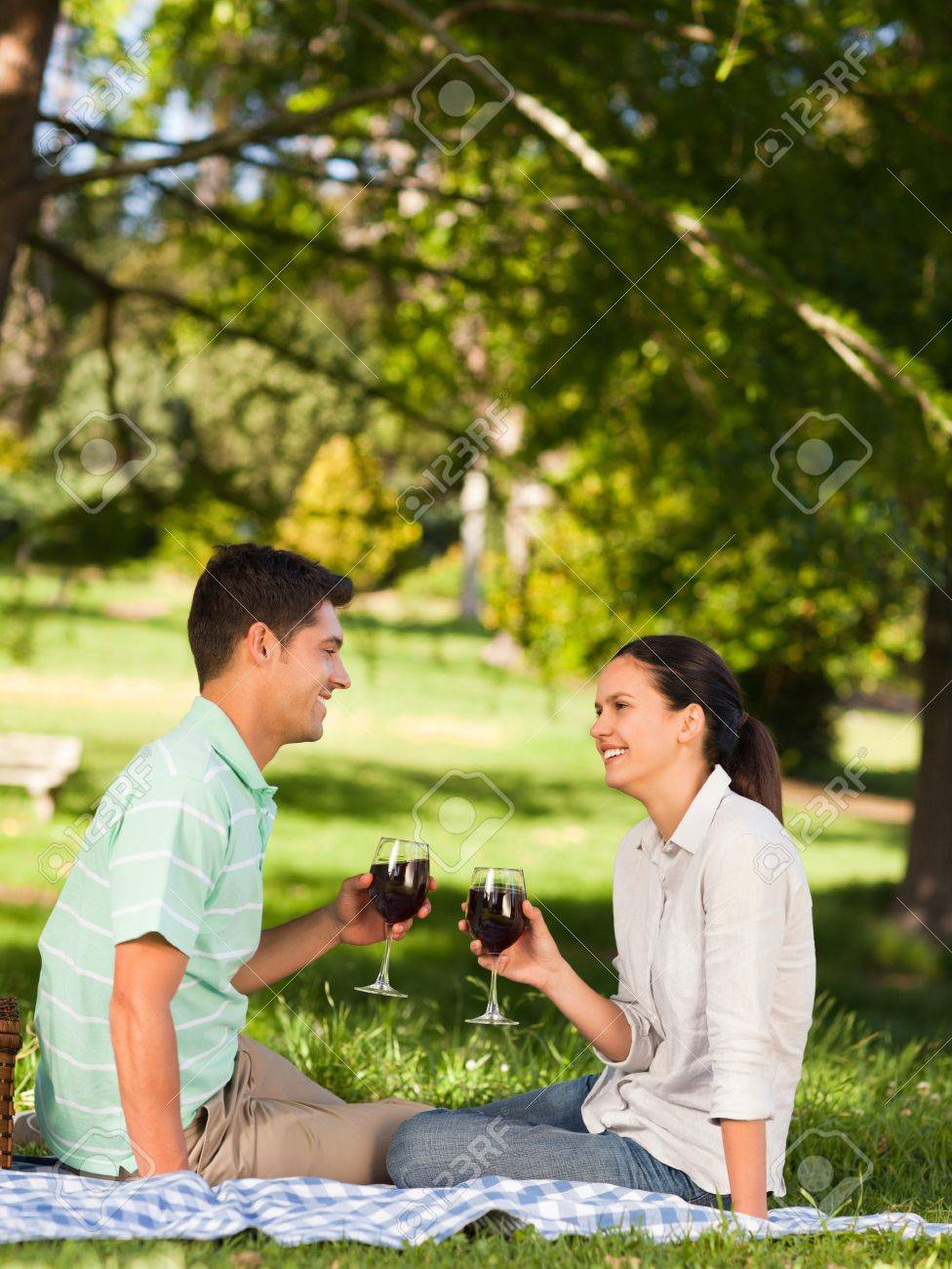 Young couple  picnicking in the park Stock Photo - 10217196
