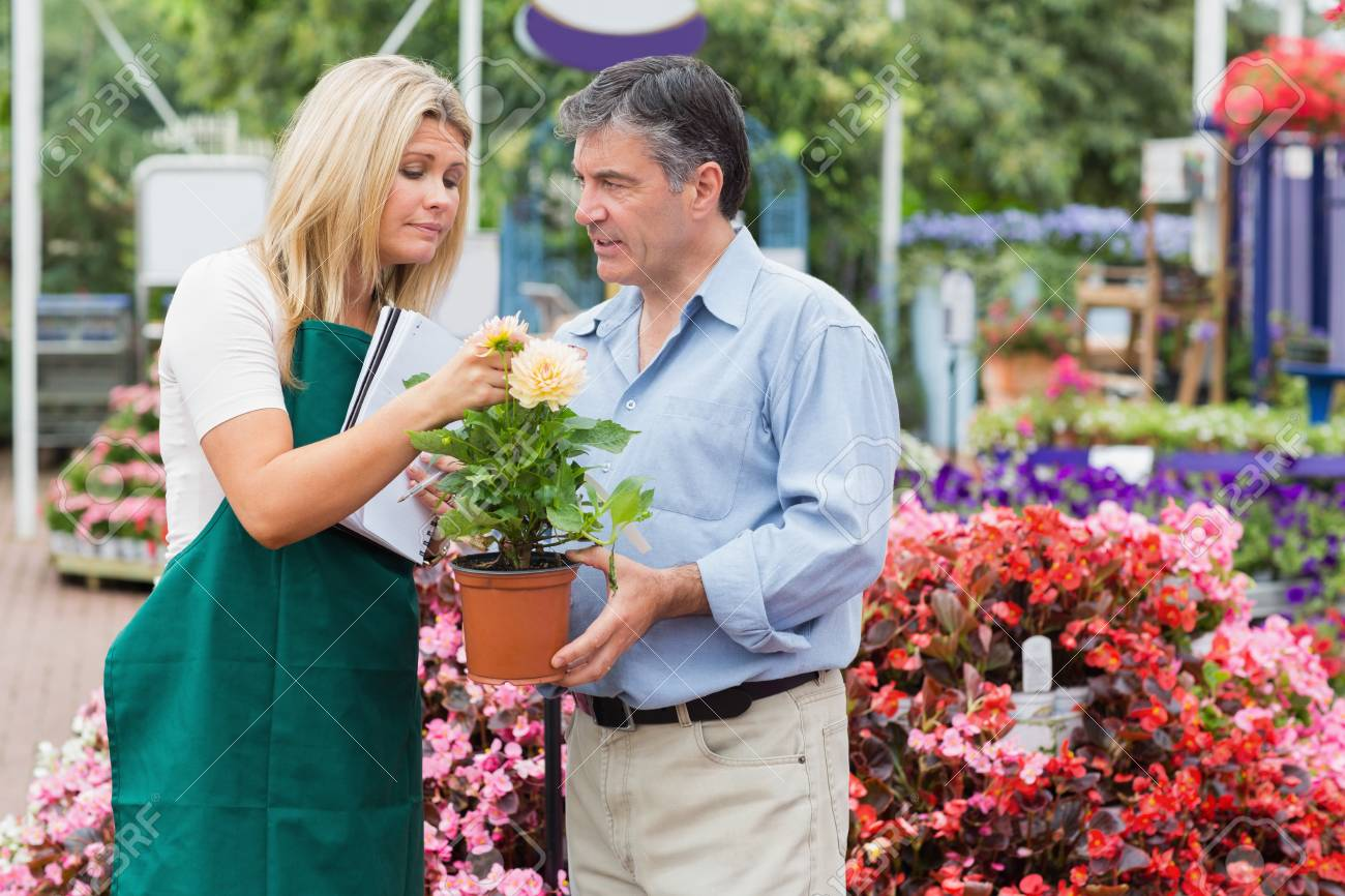 Man looking for some help in the garden centre holding a plant Stock Photo - 16078696