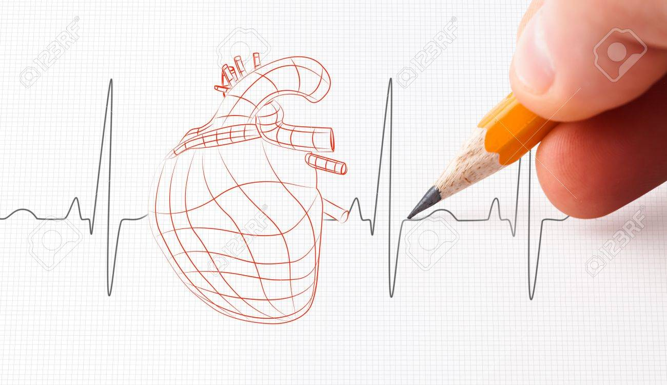 Sketch of a heart and heart rate line drawn with a pencil stock photo 18132997