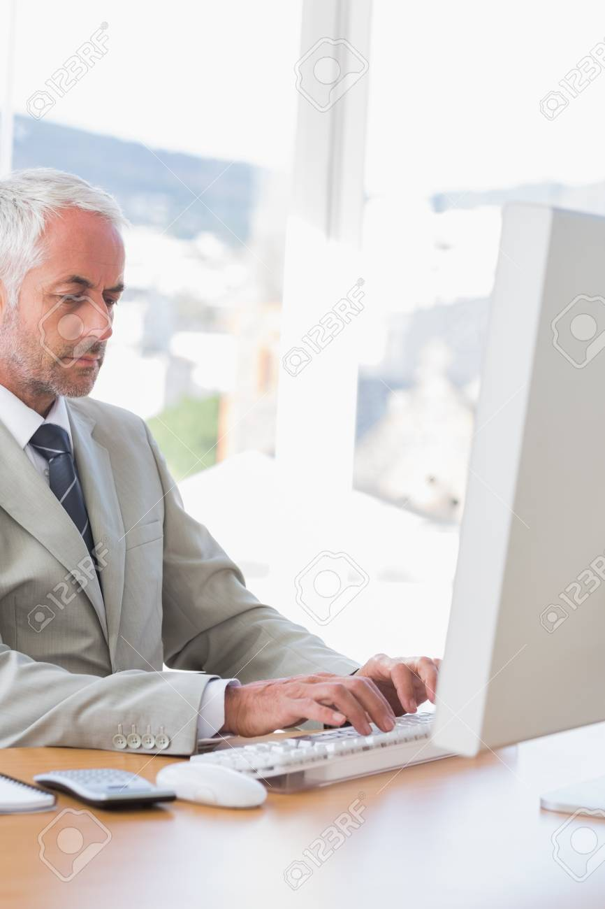 Businessman working on his computer at desk in his office Stock Photo - 20635516