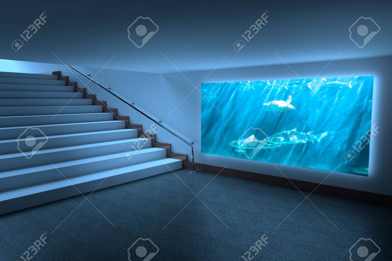 Fish in tank swimming - Room With Large Display Against Turtle Swimming In Fish Tank Stock Photo 42324082