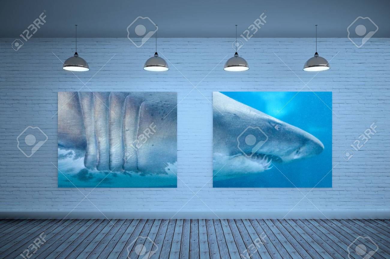 Fish in tank swimming - Room With Displays Against Shark Swimming In Fish Tank Stock Photo 42323491
