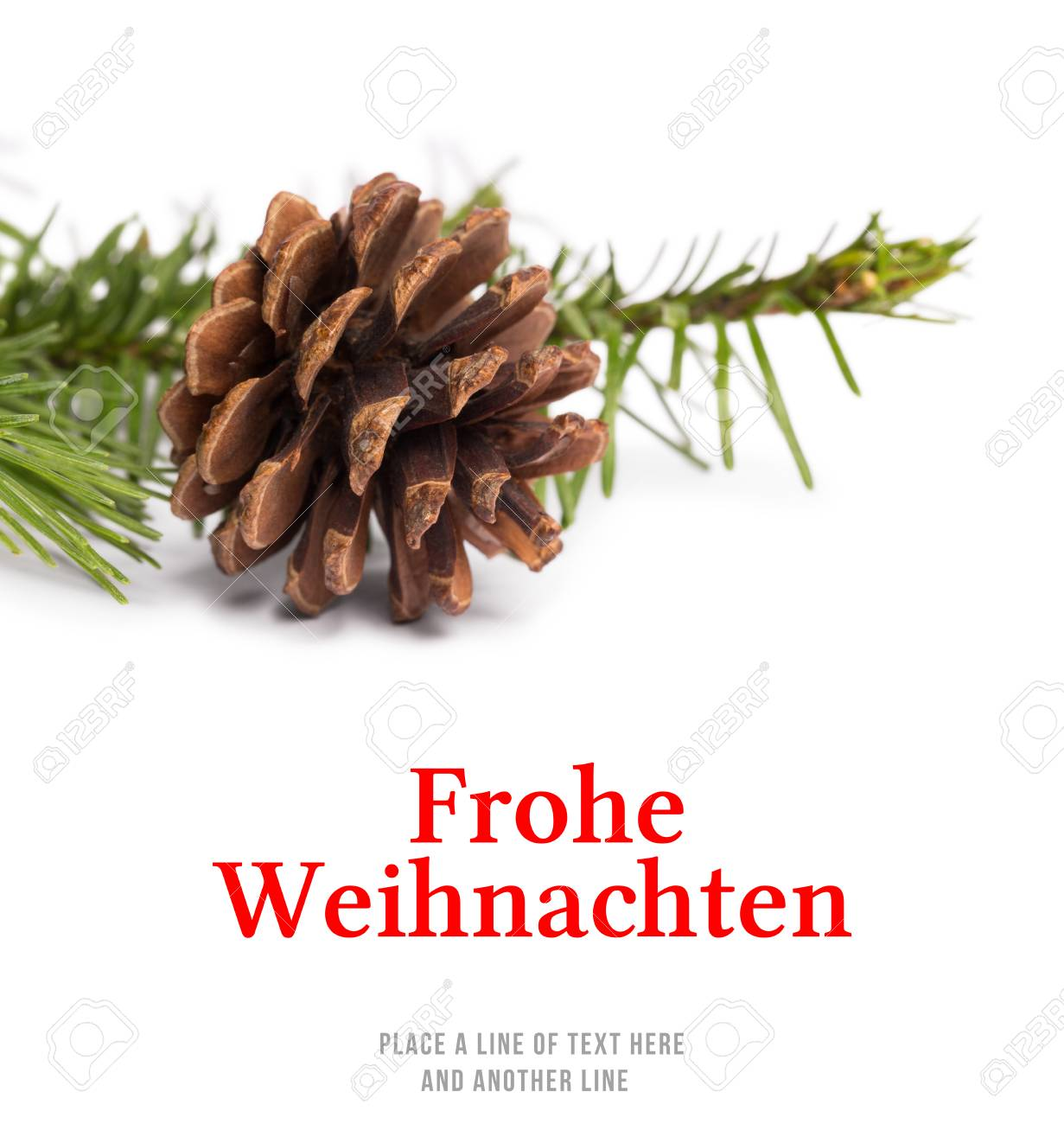 Christmas Greeting In German Against Brown Pine Cone With Fir
