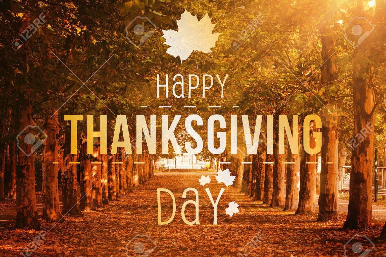Happy thanksgiving against autumn scene Stock Photo - 47543288