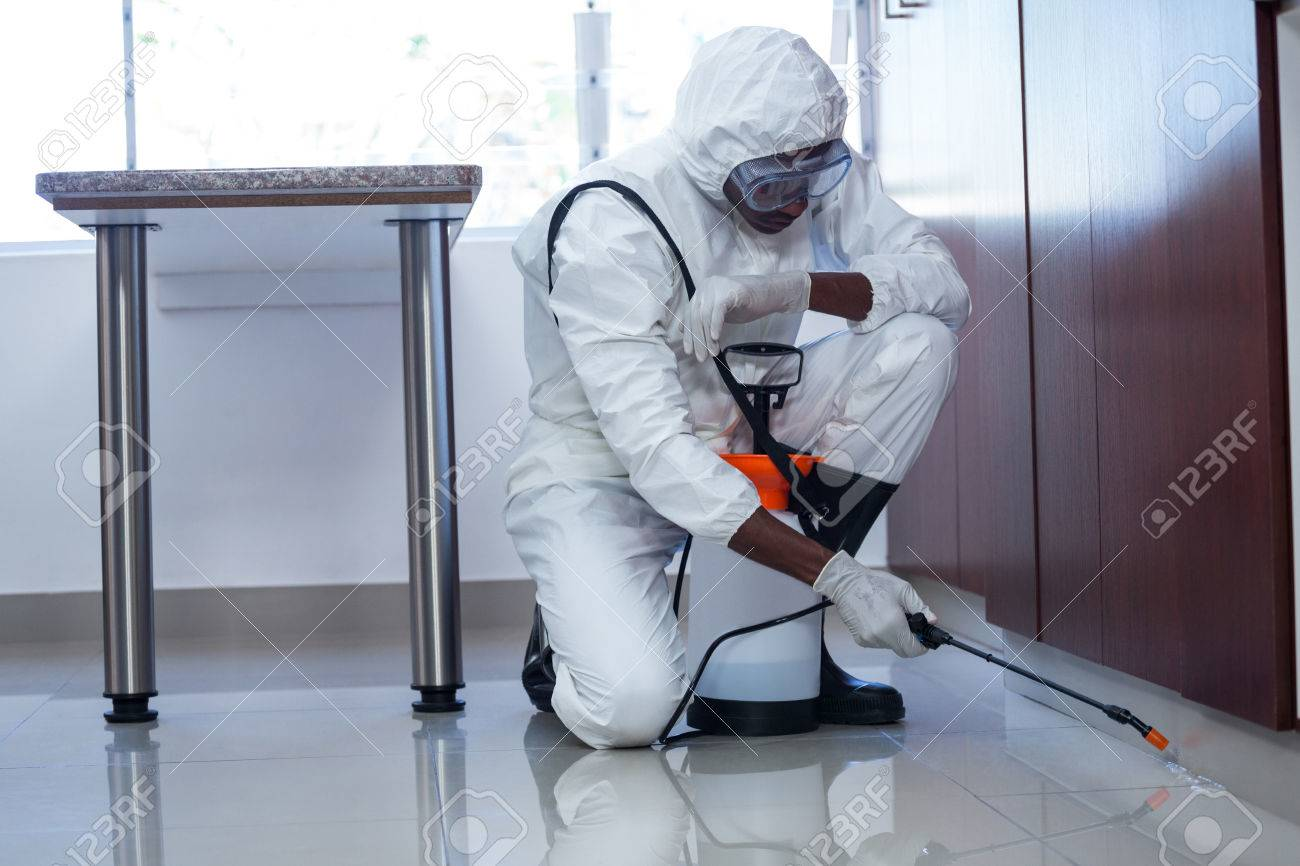 Man doing pest control at home Banque d'images - 54821051