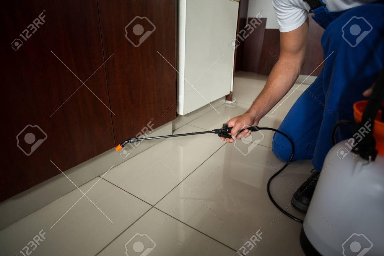 Section basse de l'homme de pulvérisation de pesticides à la maison Banque d'images - 54927149