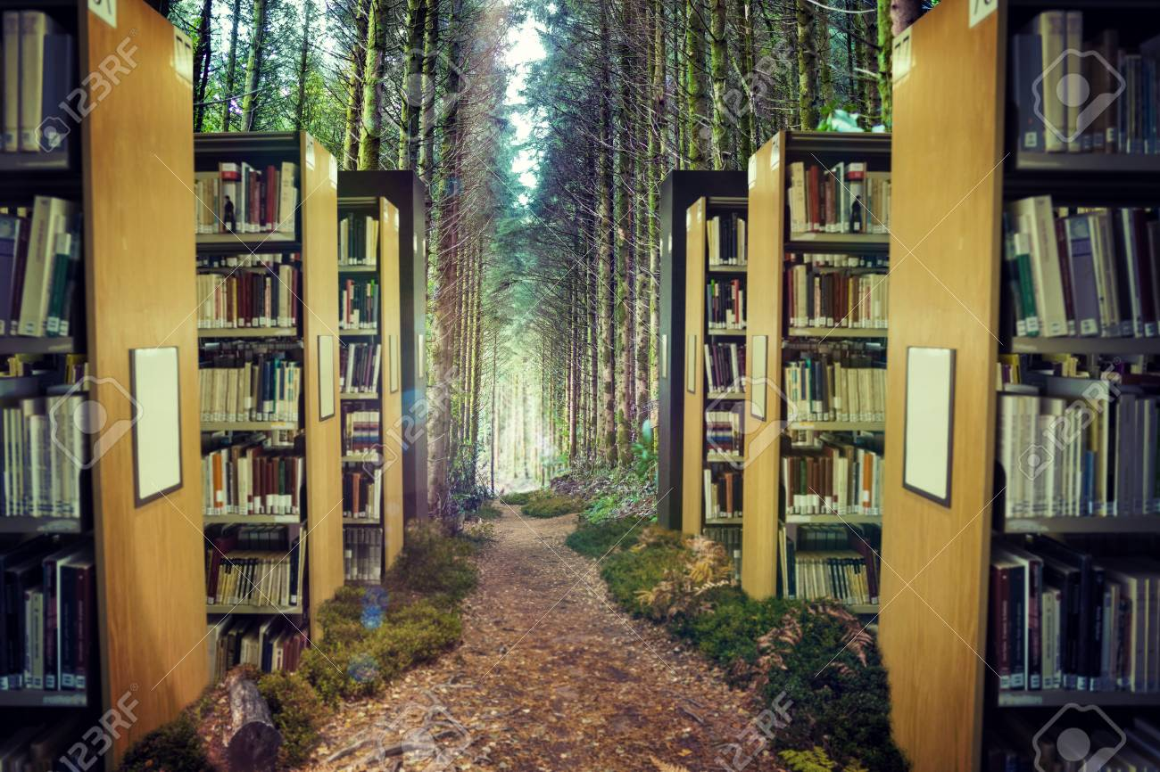 Close Up Of A Bookshelf Against Trees In Forest 3d Stock Photo