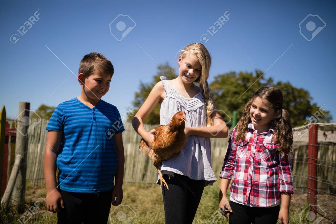 Kids carrying a hen in the farm on a sunny day - 81722683