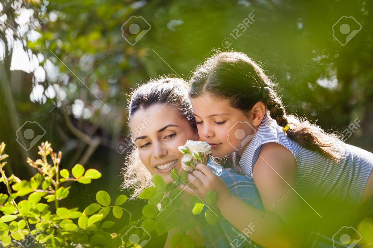 Girl smelling white roses while enjoying piggyback ride on mother in yard during sunny day - 82493747