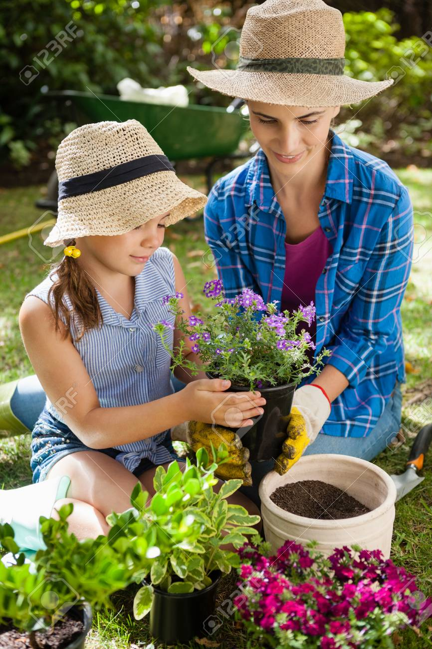 29adaa04d11 Smiling mother and daughter holding potted plant while gardening in  backyard Stock Photo - 82493866