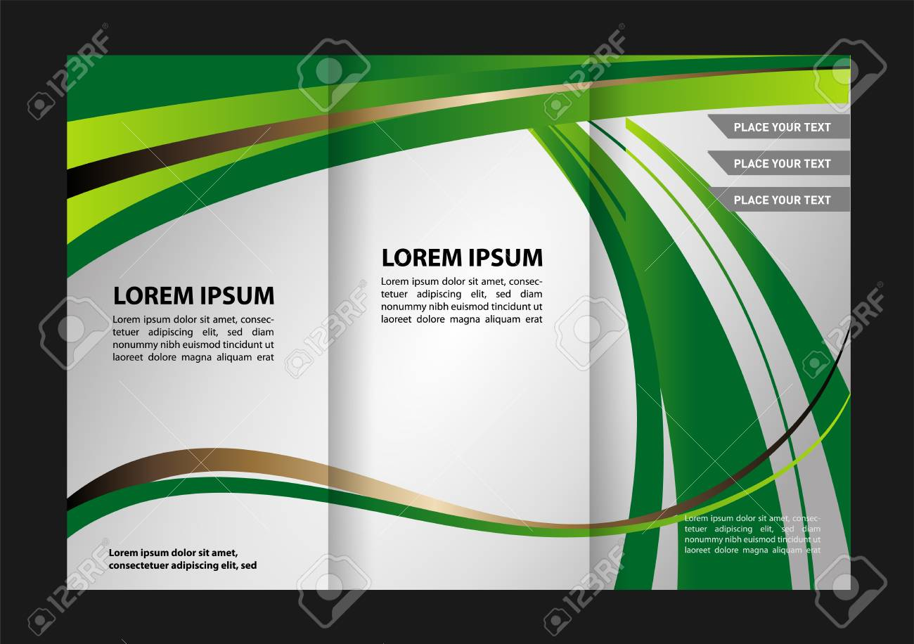 tri fold brochure design beauty salon and catalog vector template stock vector 59489758