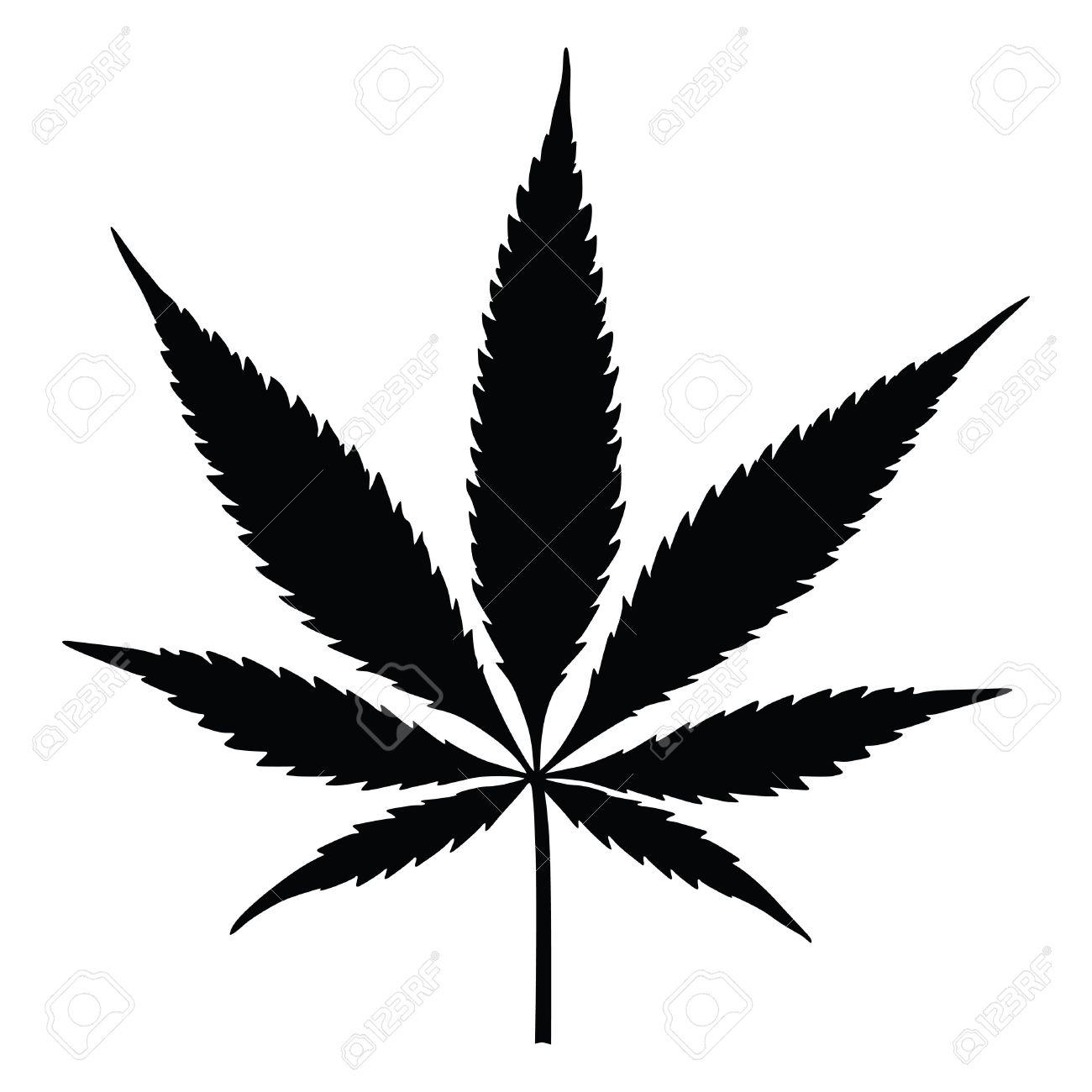 vector cannabis leaf silhouette on white background marijuana rh 123rf com marijuana leaf vector file marijuana leaf vector art
