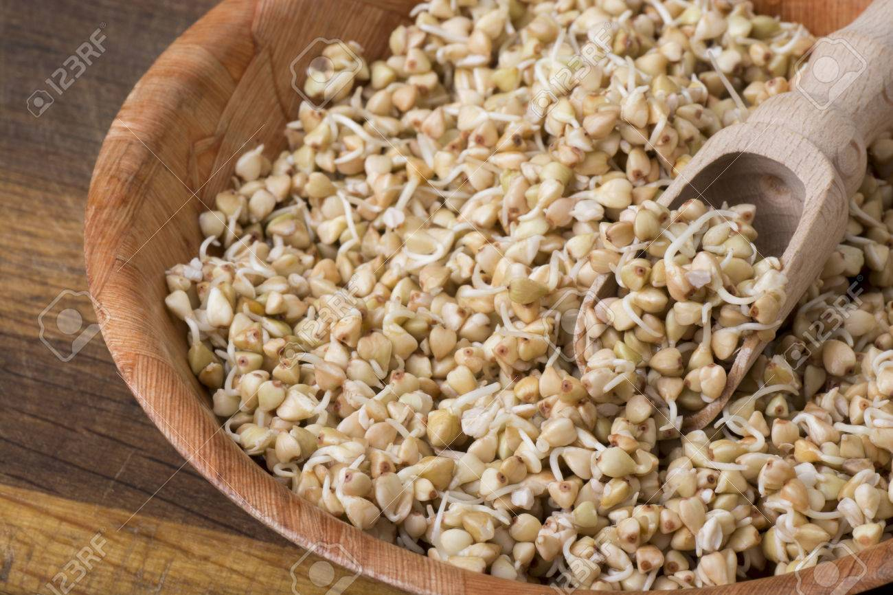 Sprouts of buckwheat groats in a bowl, rustic style - 60069897