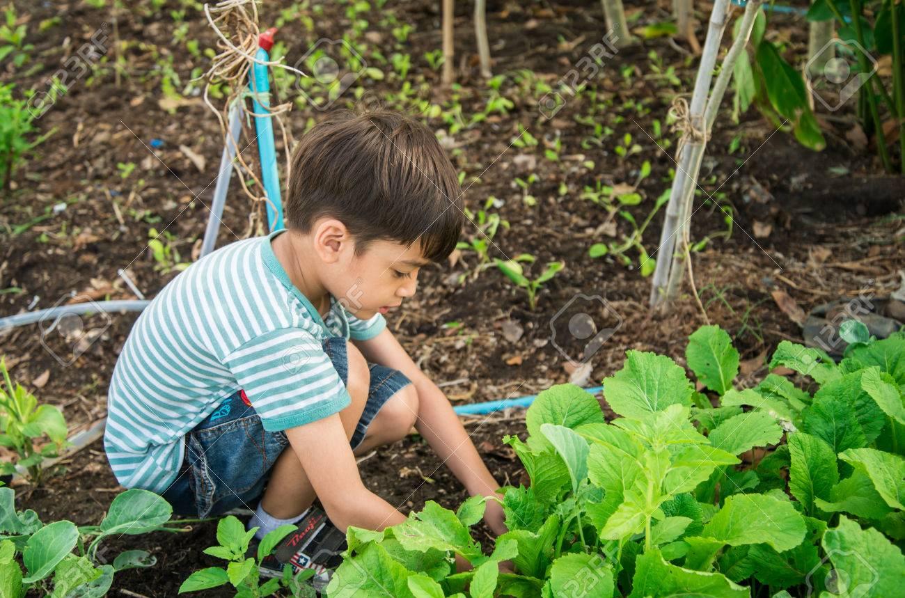 kids gardening images u0026 stock pictures royalty free kids