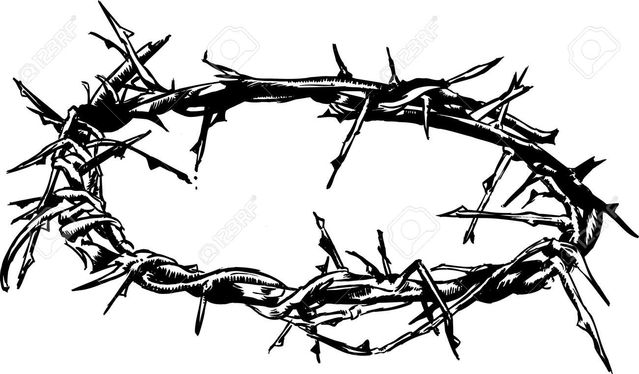 crown of thorns vector illustration hand drawn with pen and ink rh 123rf com Crown of Thorns Drawing Crown of Thorns Clip Art