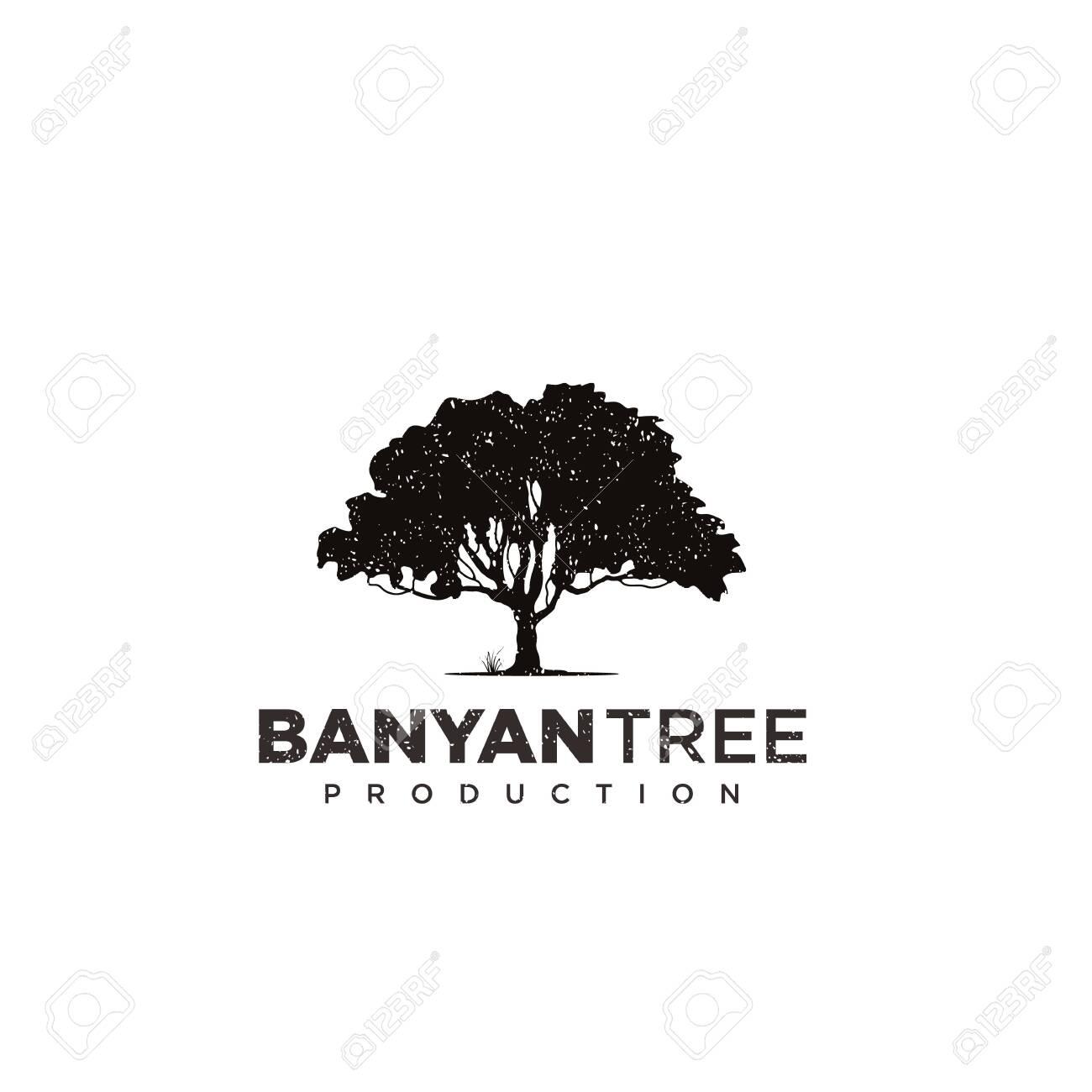 Banyan Tree Logo Design Template Royalty Free Cliparts Vectors And Stock Illustration Image 145193599