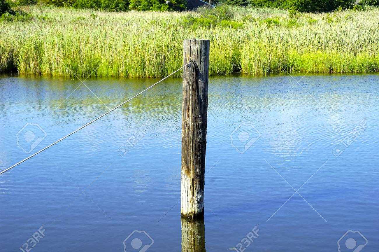 Wooden Pile in a Canal. Stock Photo - 232187
