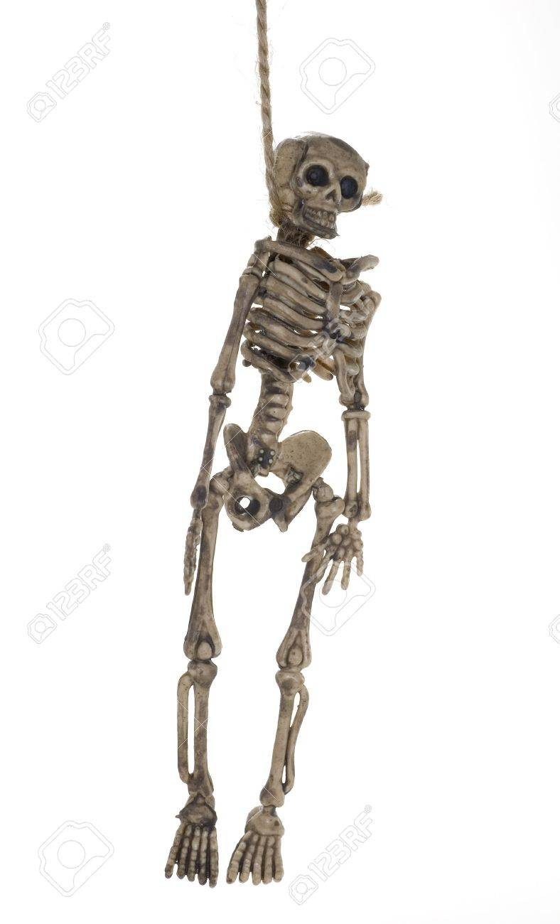 photo of a hanging skeleton halloween decoration stock photo 1922654 - Skeleton Halloween Decoration
