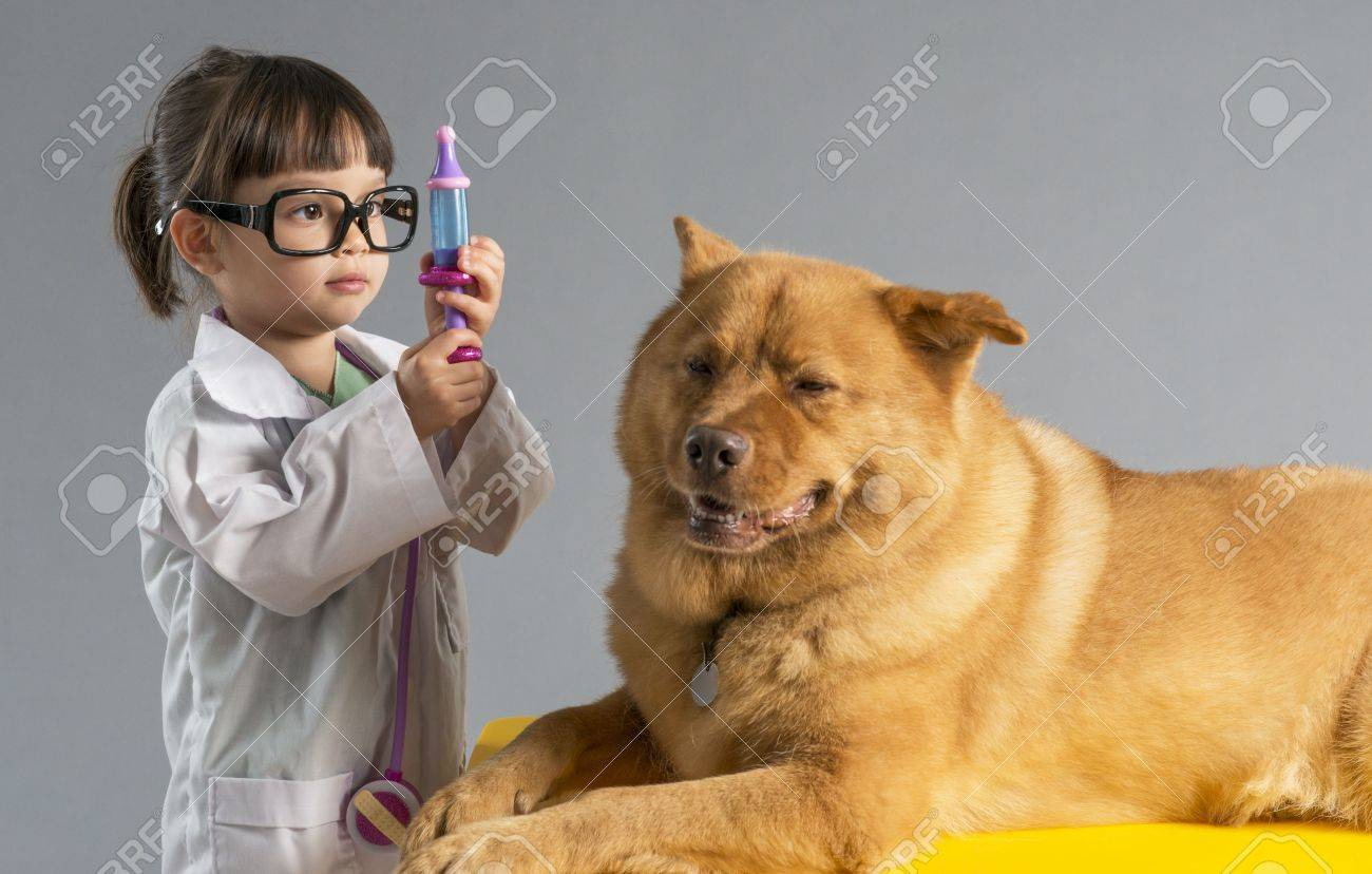 veterinar kid vet: Girl playing veterinarian with dog