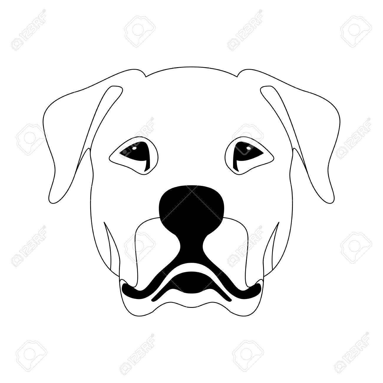 Argentine dog face vector illustration line drawing on a gray background stock vector 86426171