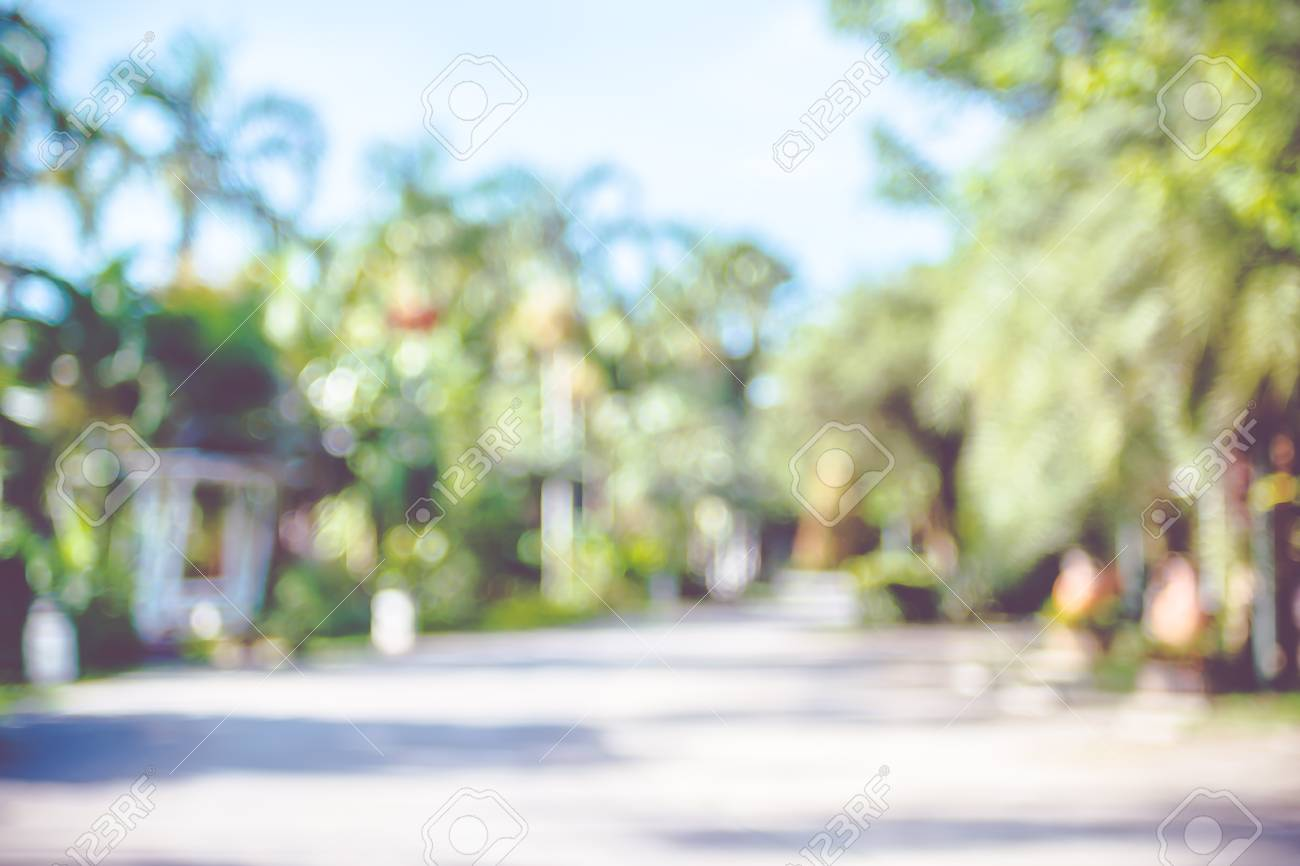 Blur Background Outdoor Park With Tree And Bokeh Light Stock Photo Picture And Royalty Free Image Image 55510281