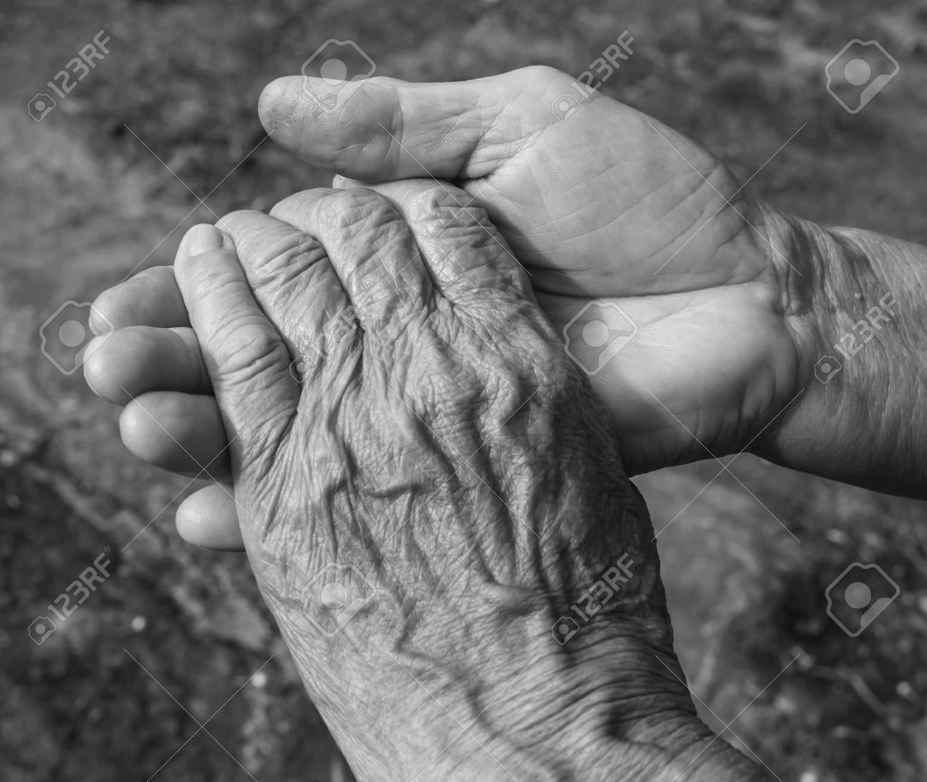 Close up of elderly couple holding hands black and white stock photo 50148471