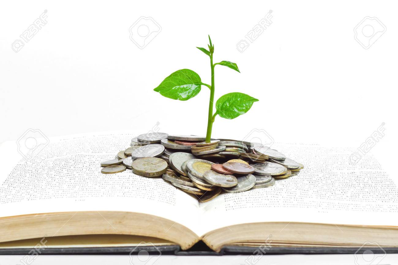 tree growing from books with coins and eye glasses   A big open book with coins and tree   Reading makes you richer  concept Stock Photo - 24704247