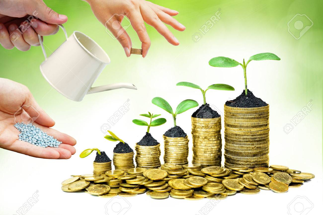 Cooperation - Hands helping planting trees growing on coins together with green background - Building business with csr and ethics - 35623008