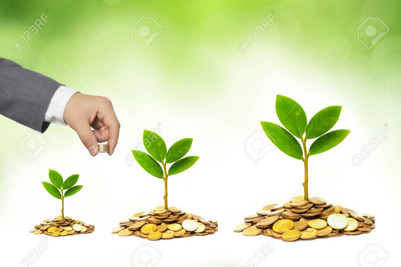 Hands Of A Businessman Giving Coins To Trees Growing On Golden