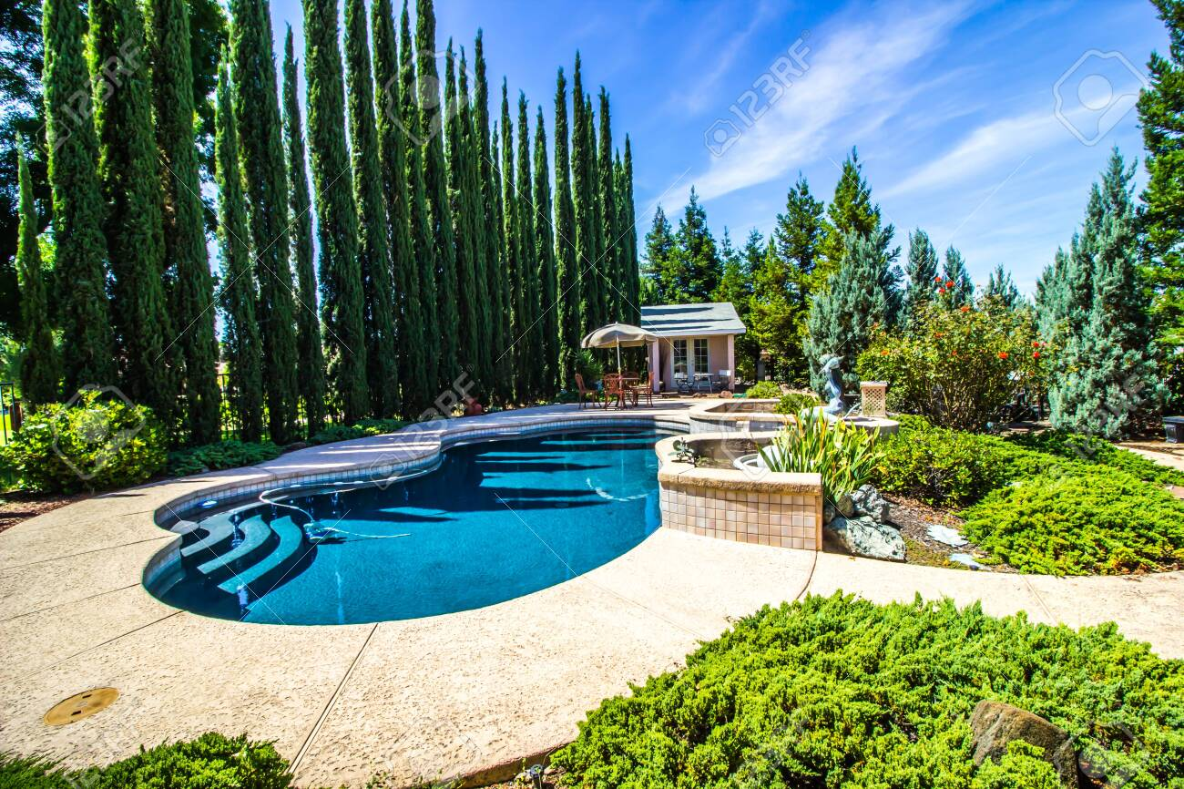 Private Yard With Free Form Swimming Pool Stock Photo Picture And Royalty Free Image Image 128038241
