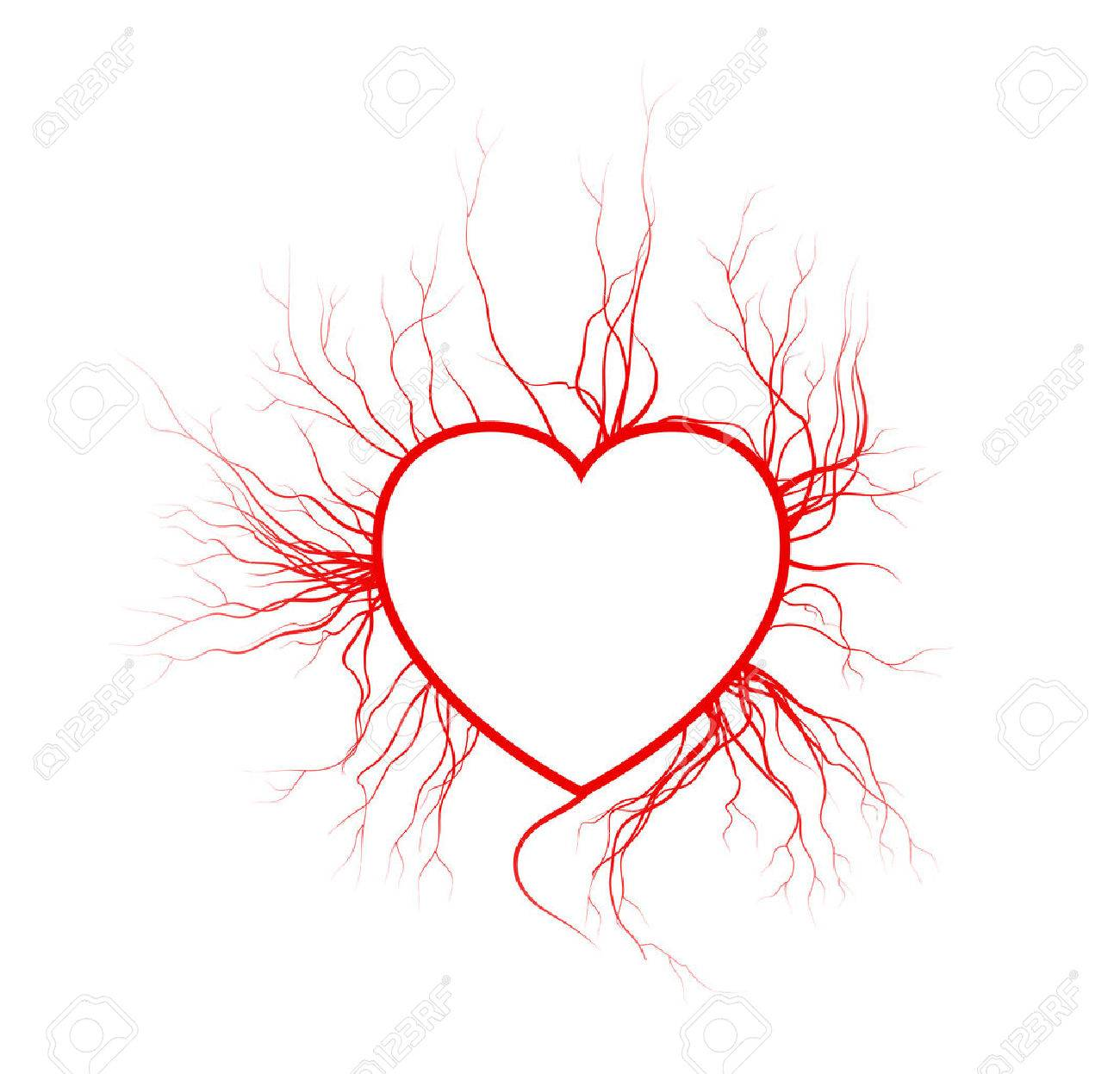 Human Veins With Heart Red Love Blood Vessels Valentine Design