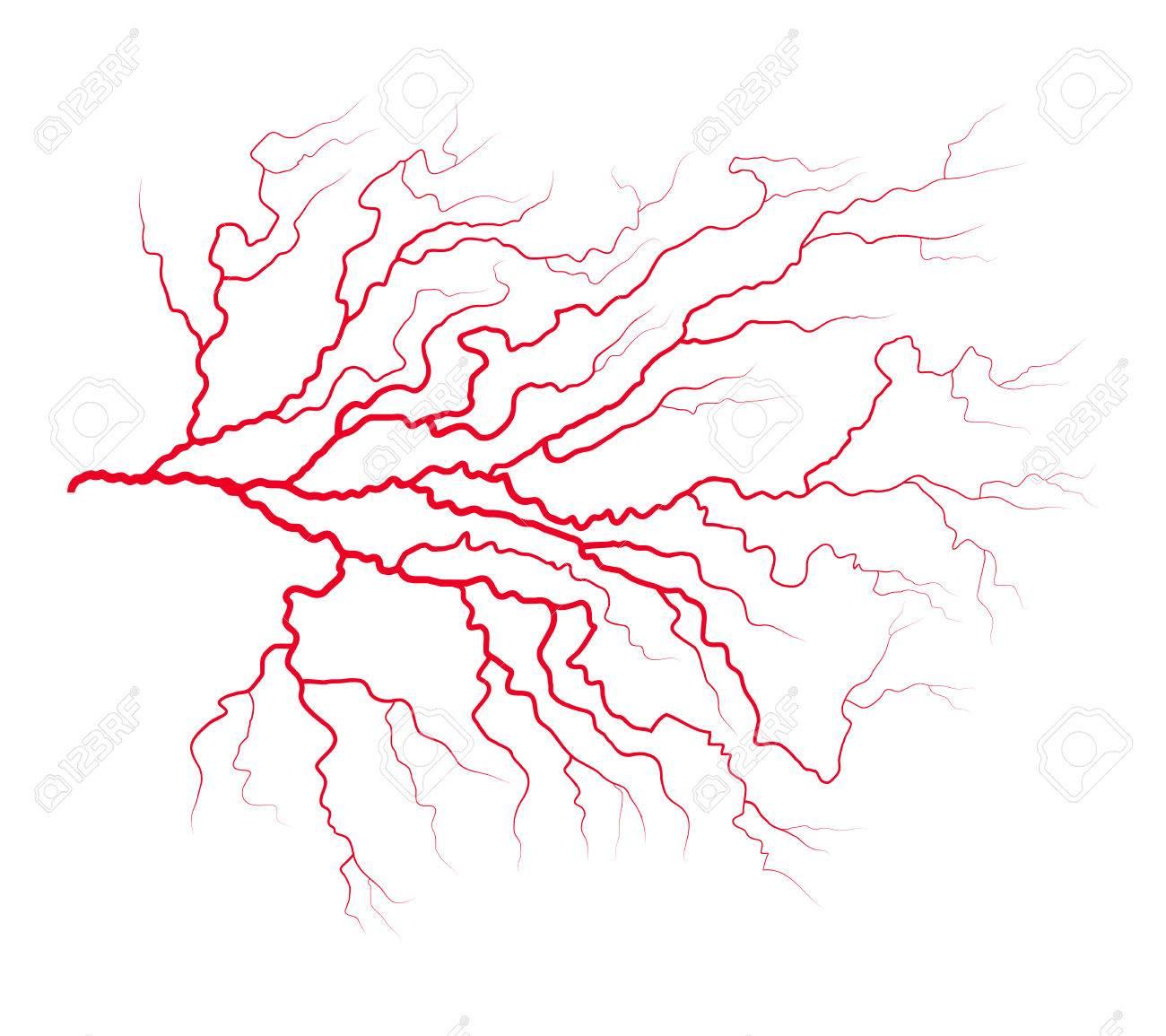 Vene Blut System Vektor Symbol Symbol Design. Schöne Abbildung ...