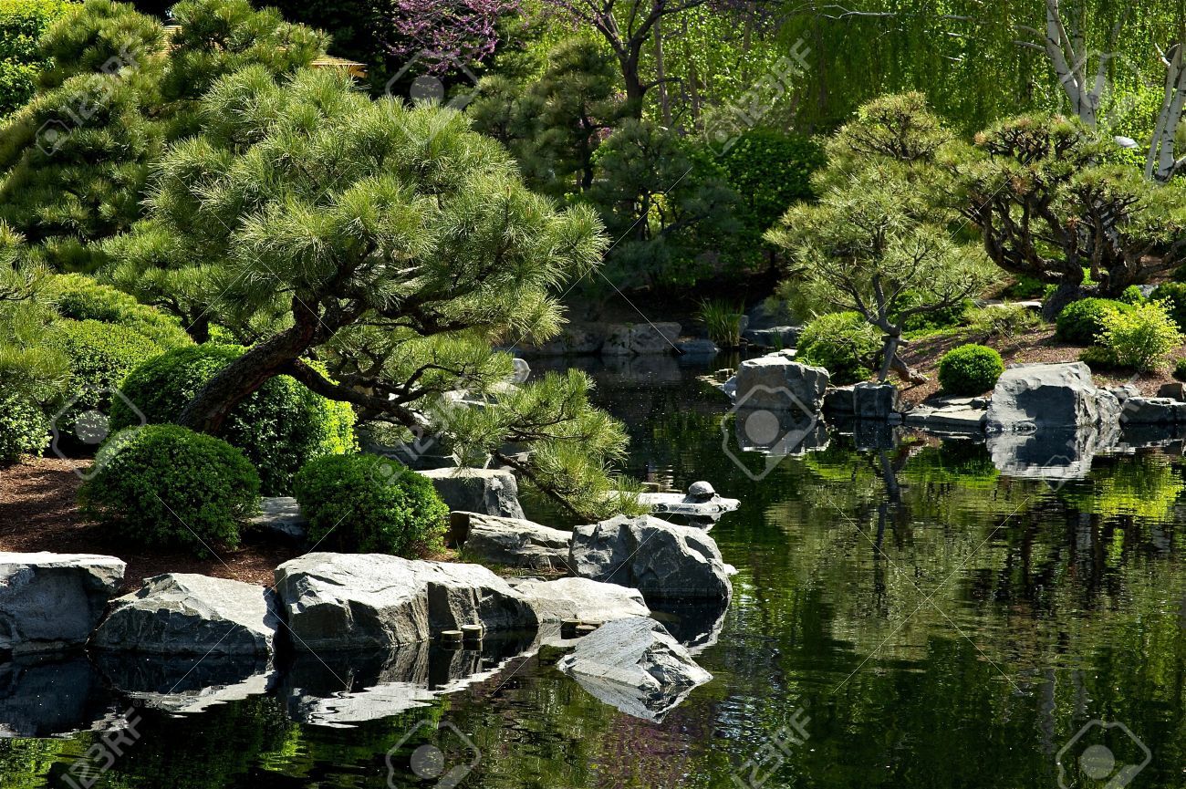 Beautiful Japanese Garden With Small Pond Garden Design Stock