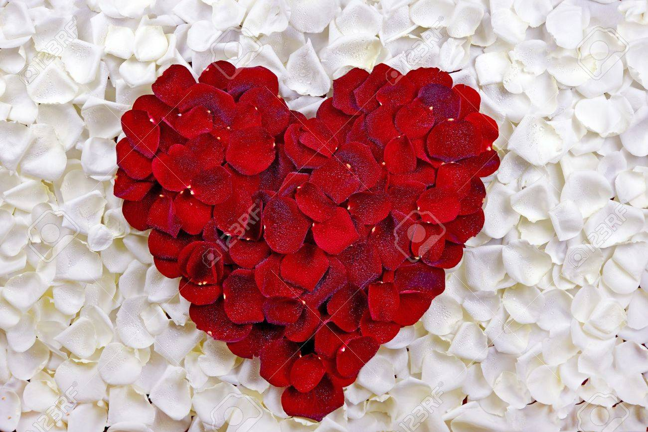Broken heart - Red rose petals in heart shape   Stock Photo ...