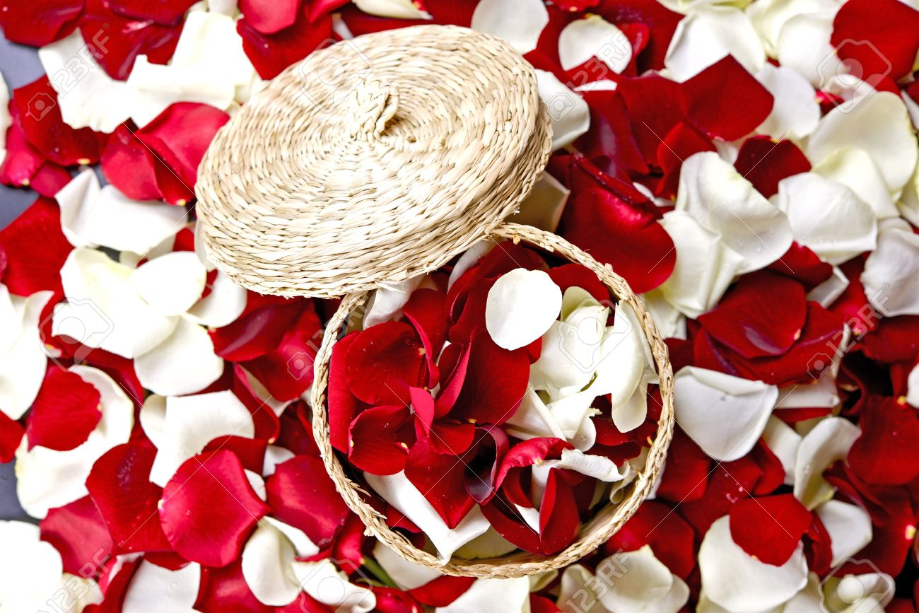 Red And White Flowers Petals Decoration Rose Petals In Small