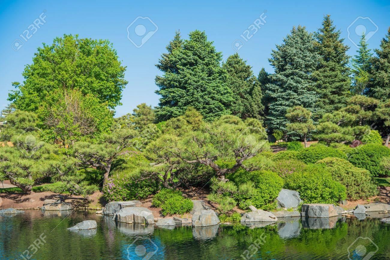 Japanese Garden And Large Garden Pond Gardening Theme Stock Photo   28416625