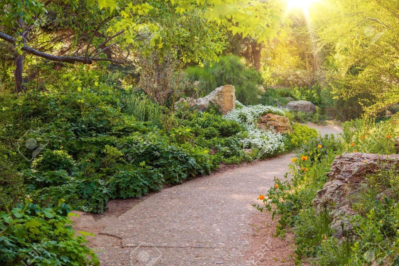 Stock Photo   Sunny Summer Garden. Beautiful Garden Walking Path. Gardening  In Summer.