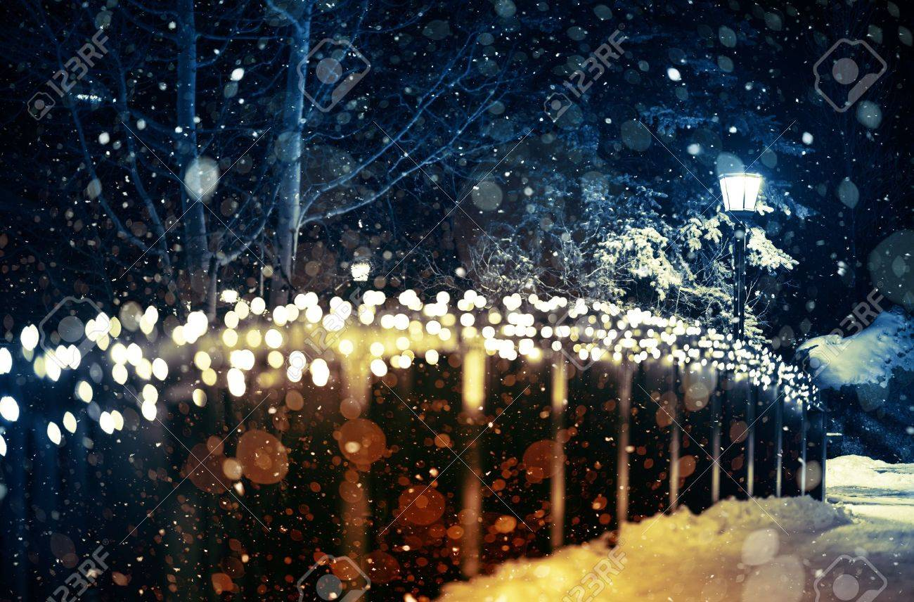 Night lights holiday - Holiday Lights Scenery Winter Night In The Park With Seasonal Lighting Decoration And The Lantern
