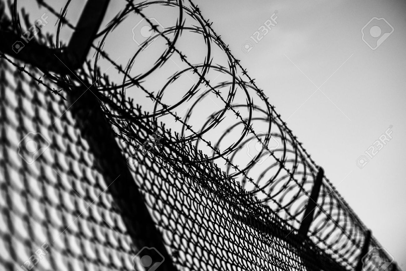 Prison Fence In Black And White. Barbed Wire Fence Closeup. Stock ...