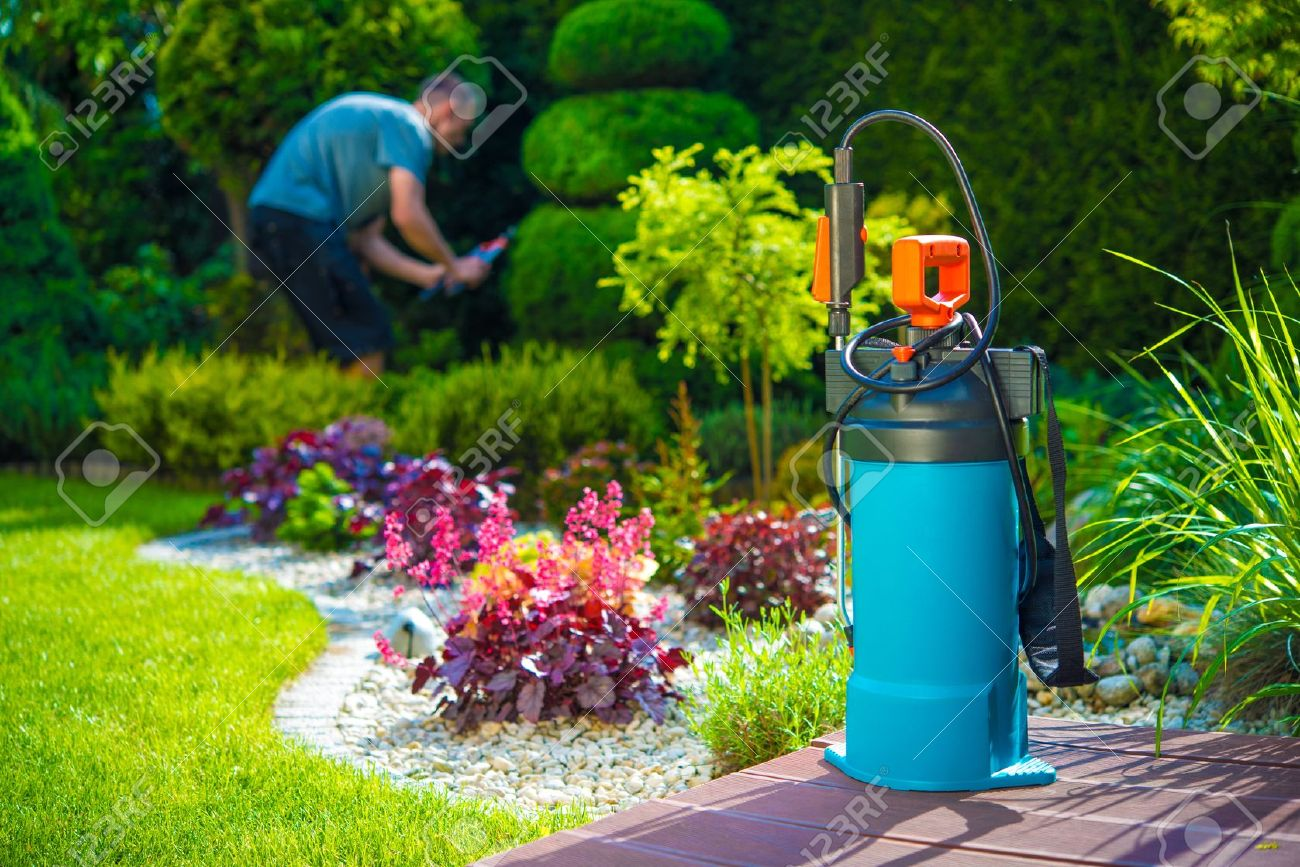 garden pesticides. Garden Pest Control Spray And Male Gardener In The Background. Spraying Pesticides A I