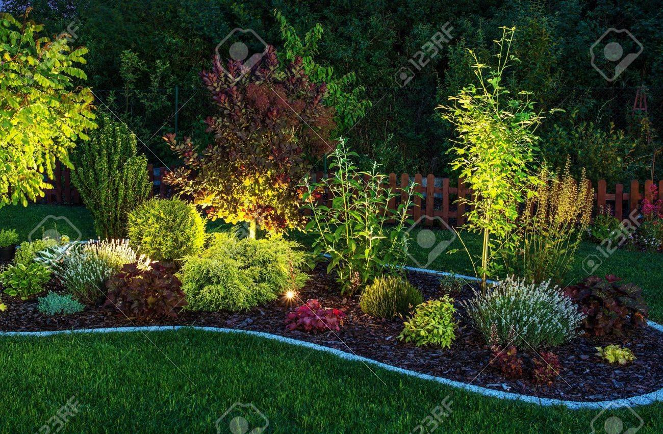 iluminado por led lighting garden backyard garden at night close