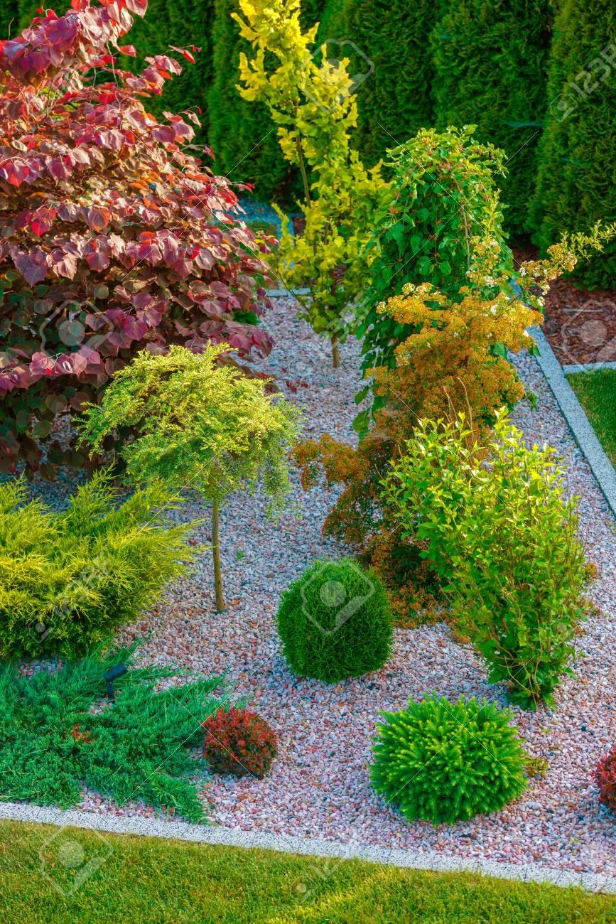 Conception de jardin de rocaille dans la photographie verticale. Jardin  d\'arrière-cour fraîchement conçu et construit.