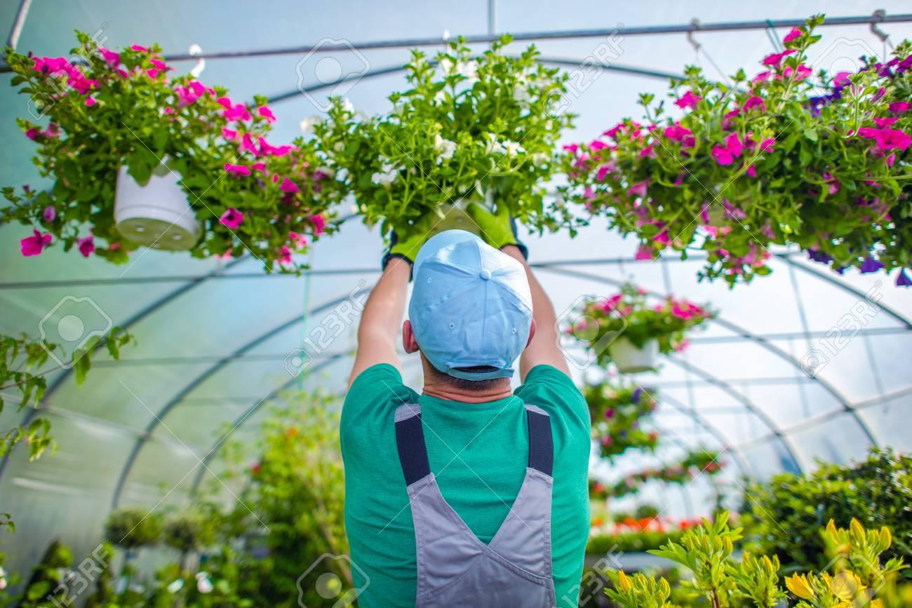 Winter Gardening Greenhouse Plants