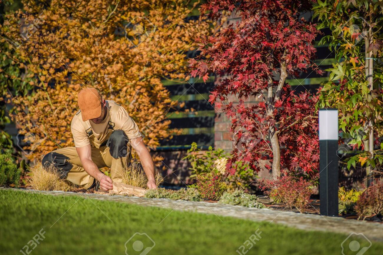 Fall Season Garden Works Caucasian Men Planting New Flowers