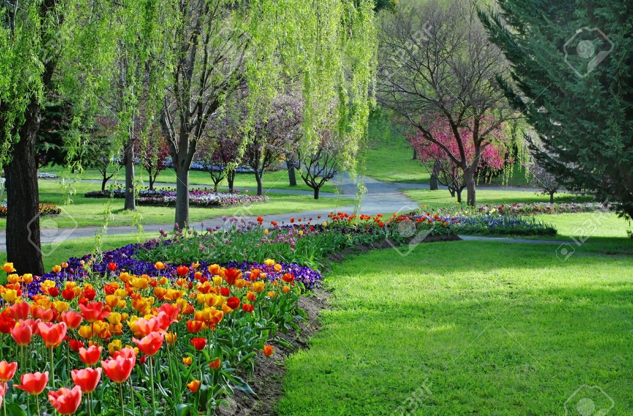 Colorful Park In Springtime With Trees And Flowers Stock Photo