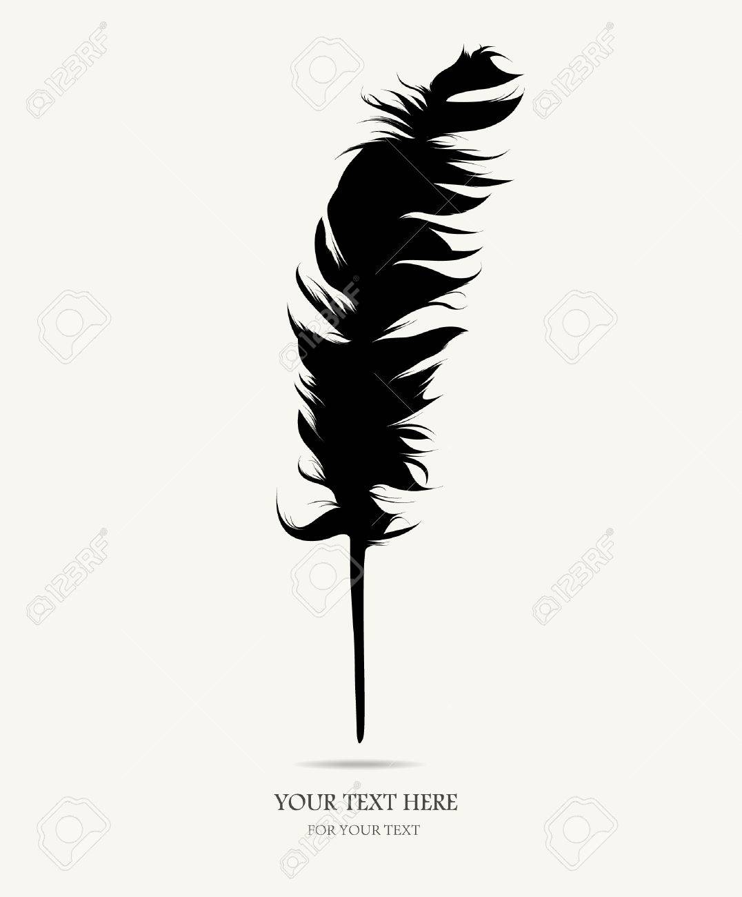 Feather Stock Vector - 8209213