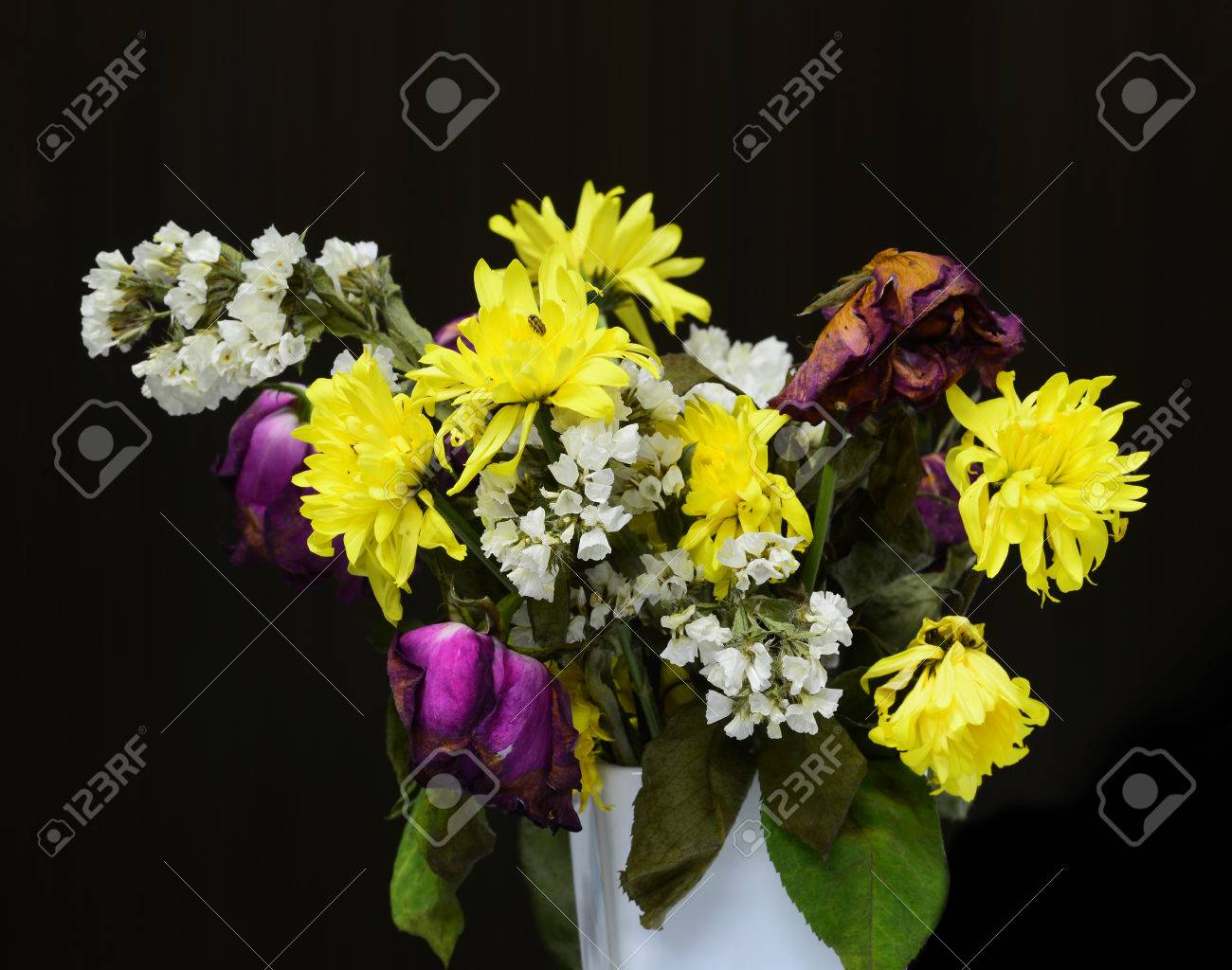 Dead Flowers In A Vase Isolated On Black Background Stock Photo