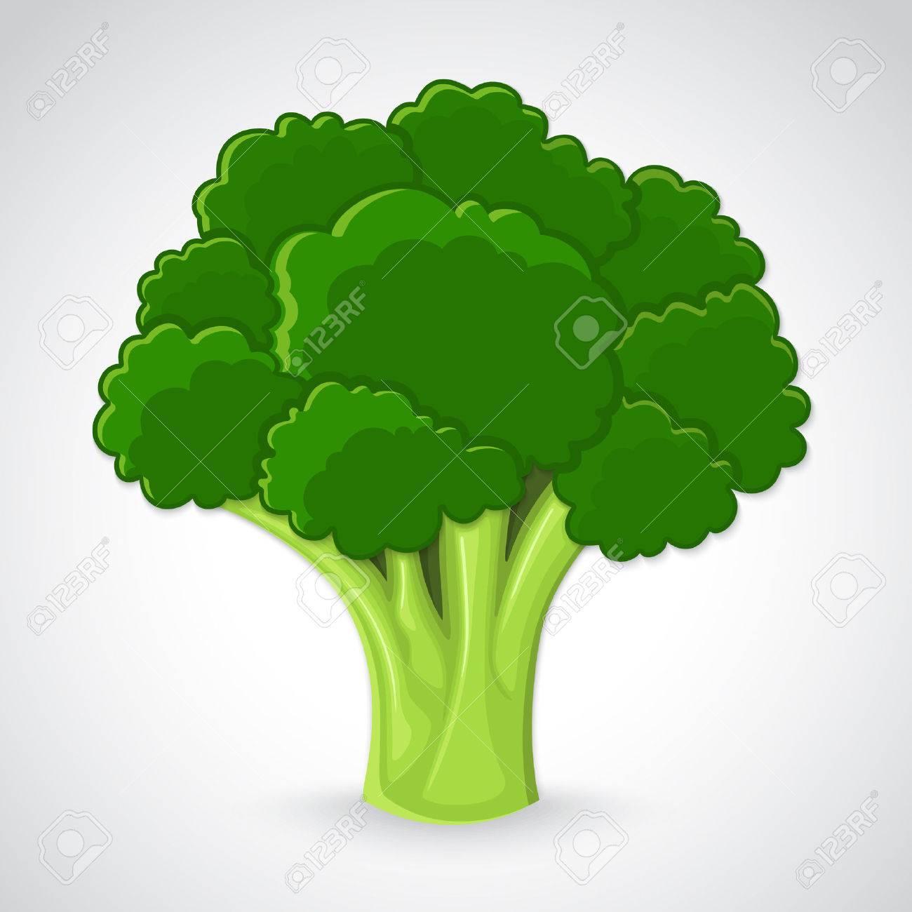 Atristic hand drawn illustration of broccoli - 23268900