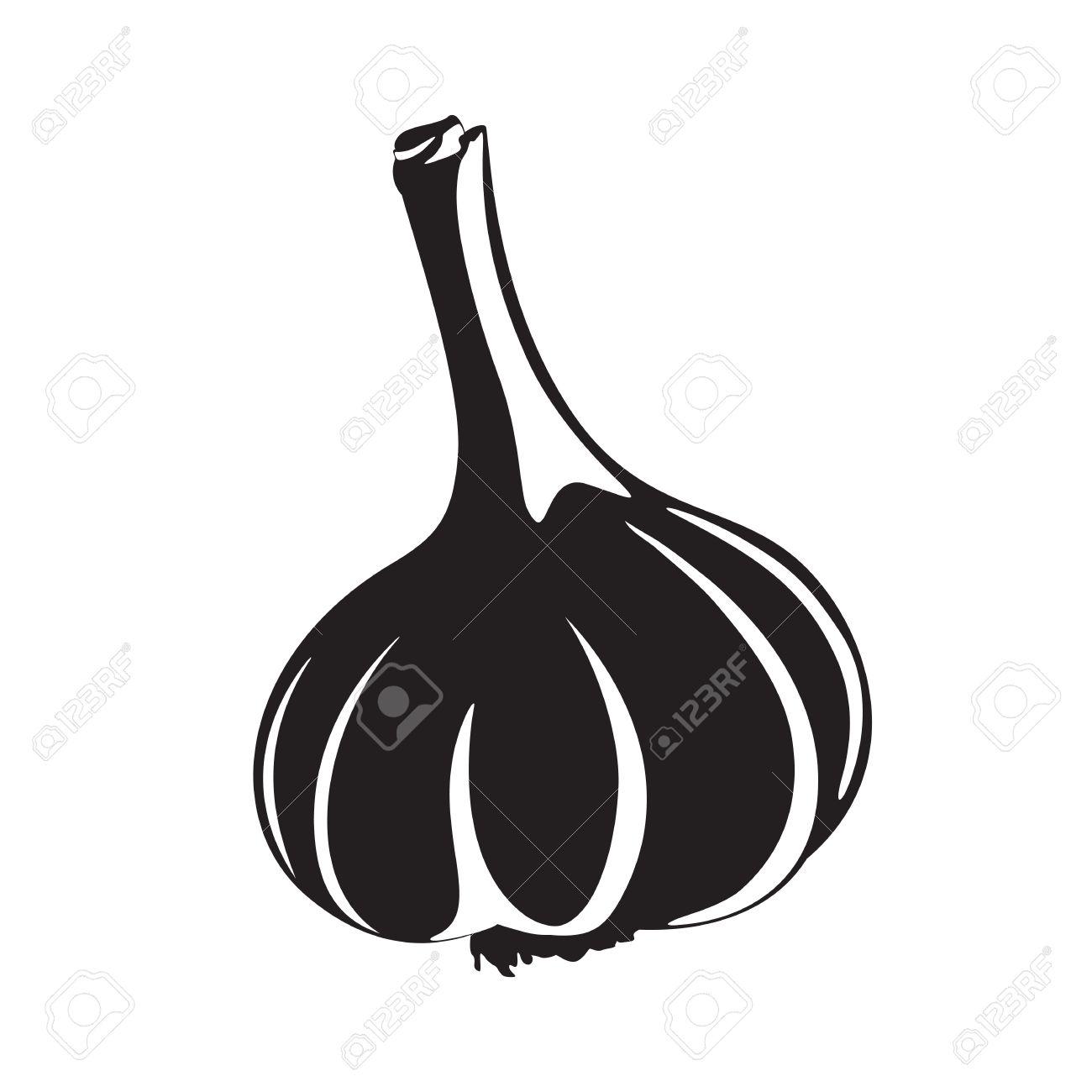 Graphic garlic silhouette, black and white - 25468444