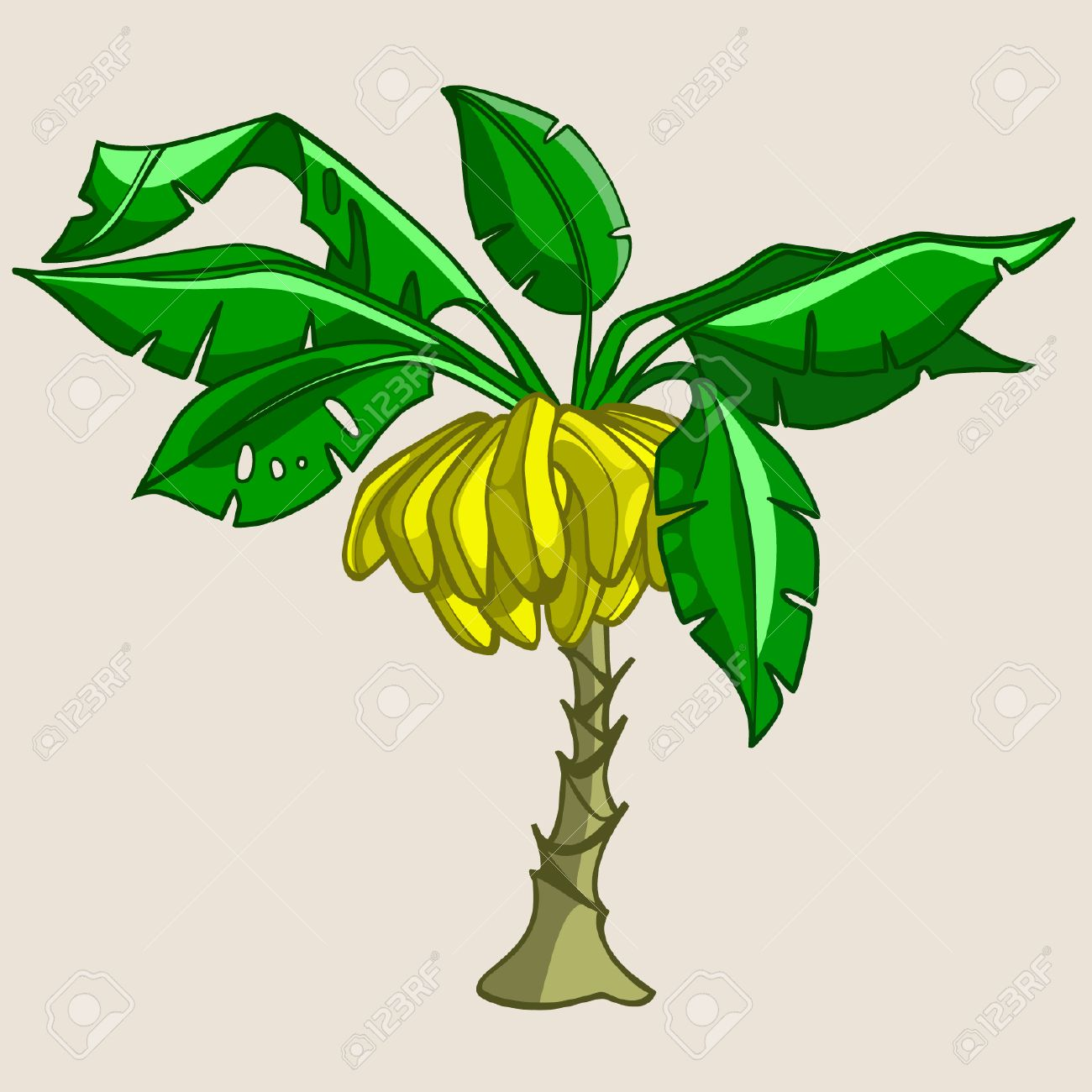 Cartoon Banana Tree With Bananas Royalty Free Cliparts Vectors And Stock Illustration Image 58014293